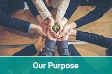 Our purpose - Sustainability Delivery Group