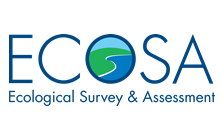 Logo - ECOSA newest