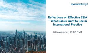 Reflections on Effective ESIA webinar thumbnail