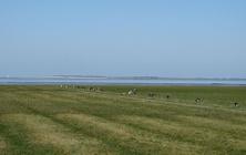 Places - Noorderleeg