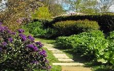 General - Country Garden