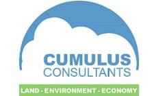 Cumulus Consultants