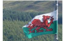 Flag - Wales