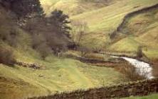General - Haltwhistle river