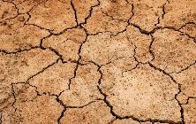 General - Drought ©EA