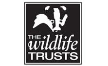 Logo - © The Wildlife Trusts
