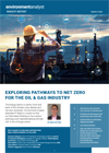 Oil and Gas Insight Report 2020