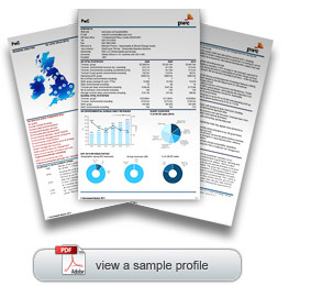 environment analyst business news and analysis